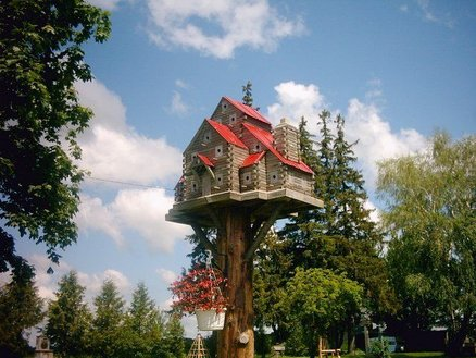 John Looser - Extreme Bird House Mounted on Tree